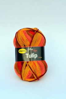 Tulip Color - 5206